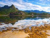 Norwegian fiord — Stock Photo