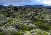 Lava field at Landmannalaugar — Stock Photo