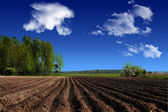Landscape, agriculture, farmland in the country — Stock Photo