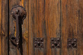 Beautiful door knocker — Stock Photo
