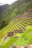 Inka-Stadt Machupicchu (peru) — Stockfoto