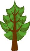 Cartoon conifer Tree. Isolated — Stock Vector