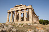 Ruins of the temple of Selinunte — Stockfoto