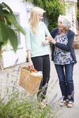 Teenage Girl Helping Senior Woman To Carry Shopping — Stock Photo
