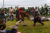 Viking Festival 2014 — Stock Photo