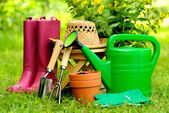 Gardening tools on green background and grass — Stock Photo