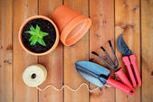 Gardening tools and objects on old wooden background — Stock Photo