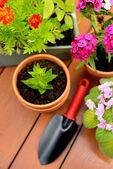 Flower pots and shovel pot in green garden — Stock Photo