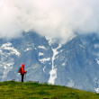 Young woman with backpack in red jacket in mountains — Stock Photo #49258761