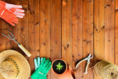 Copyspace frame with gardening tools and objects on old wooden background — Stock Photo