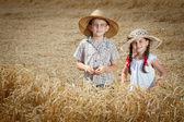 Little children in wheat — Stock Photo