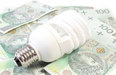 White energy saving bulb lying on heap of paper money — Stock Photo