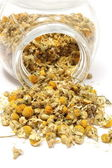 Heap of dried camomile in glass jar — Stock Photo