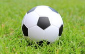 Small stress ball lying on the green grass — Stockfoto