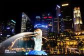 Singapore Merlion Park At Night — Стоковое фото