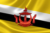 Close up of Bruneian Flag — Stock Photo
