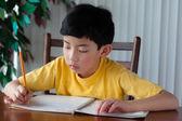 Cute Asian Boy Doing Homework — Stock Photo