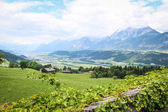 Beautiful Landscape in the Austrian Alps — Stock Photo