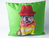 Decorative pillow with dog drawing — 图库照片