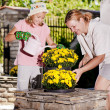 Planting flowers — Stock Photo #49052849
