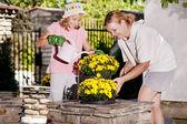 Planting flowers — Stock Photo