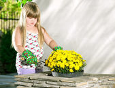 Little girl planting flowers in pots — Stock Photo
