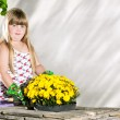 Little girl planting flowers in pots — Stock Photo #49524799