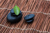Pebbles and green leaf — Stock Photo