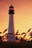 Cape Florida Lighthouse — ストック写真