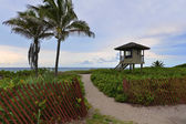 Tropical beach — Стоковое фото
