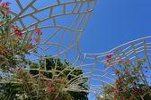 майами-бич линкольн парк — Стоковое фото