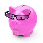 The smart piggy bank — Stock Photo