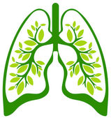 The green lungs — Stock Photo