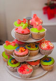 Bright colored muffins — Stock Photo