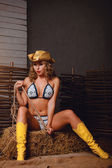 Bikini girl in cowboy hat and boots — Stock Photo