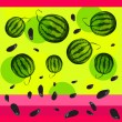Watermelon and seeds from watermelon. — Stock Vector #49235129