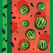 Watermelon and seeds from watermelon. — Stock Vector