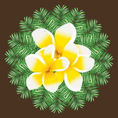 Plumeria seamless vector pattern palm leaves background — Stock vektor