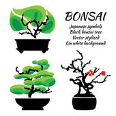 Bonsai, vector set on a white background — Stock Vector