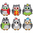 Owls in winter hats colored vector — Stock Vector