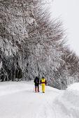 Trekking on the snow — Stock Photo