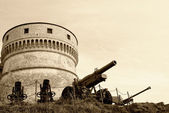 Gun under the tower — Stock Photo