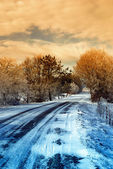 Icy street in the park — Stock Photo