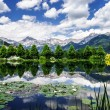 Water lily pond in Austria — Stock Photo #48955871