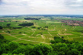 Alsace view from the top of hill — Stock Photo