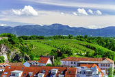 Breisach bird-fly view from the hill — Stock Photo
