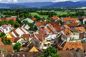 Roofs of Breisach on Rhein — Stock Photo