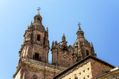 Salamanca cathedral view, Spain, summer — Stock Photo