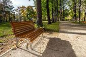 Empty wooden bench in park lane — Foto Stock