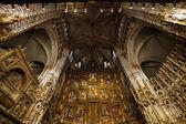 Majestätiska katedralen interiörer — Stockfoto